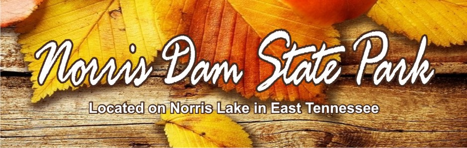 Friends of Norris Dam State Park